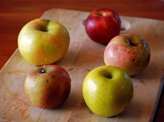 Heirloom Apples for Tasting