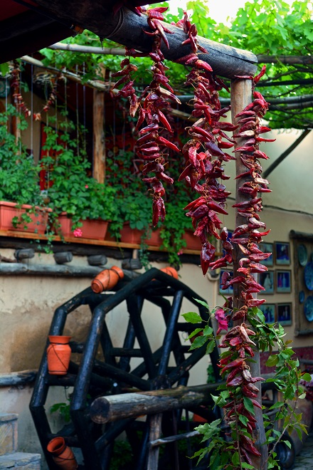 Chili Peppers and Water Wheel