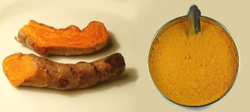 Turmeric, Two Forms